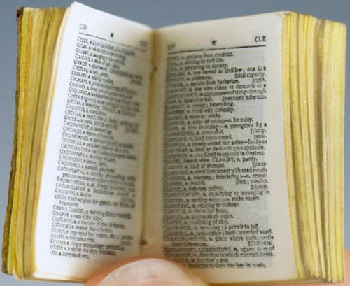 tiny dictionary 6.jpg